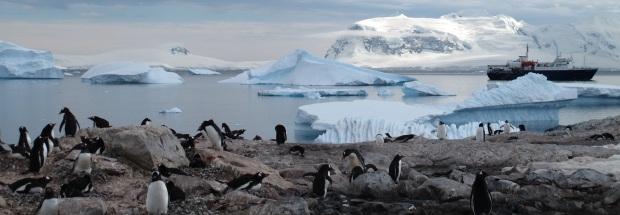 antarctica-940554