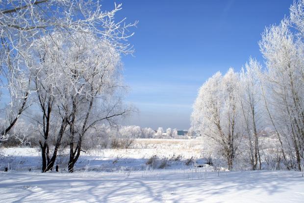 winter-1891364