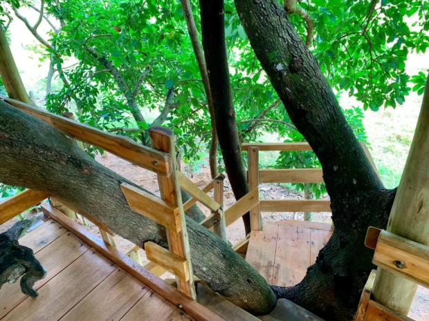 Acácia Tree House - Casas de hóspedes para Alugar em Pirenópolis